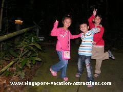 Fishing cat trail at Singapore Night Safari