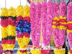 Where to see or buy flower garlands in Little India? Along Baffalo Road, Cambell Lane and Little India Arcade